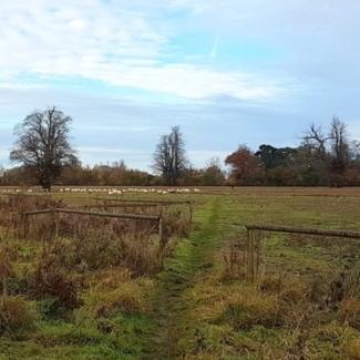 Bath Road site