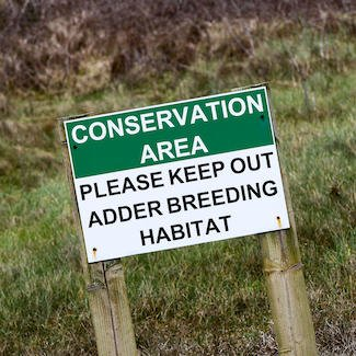 50 years of Conservation Areas